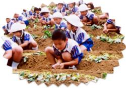 聖和幼稚園 園の行事