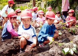 亀山幼稚園 園の特色