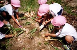 認定こども園 下関短期大学付属第二幼稚園 教育方針