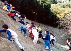 認定こども園 山口中央幼稚園 園の行事