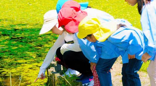 下松暁の星幼稚園 園の行事