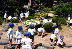認定こども園 あおい幼稚園 教育方針