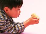 西円寺幼稚園 教育方針